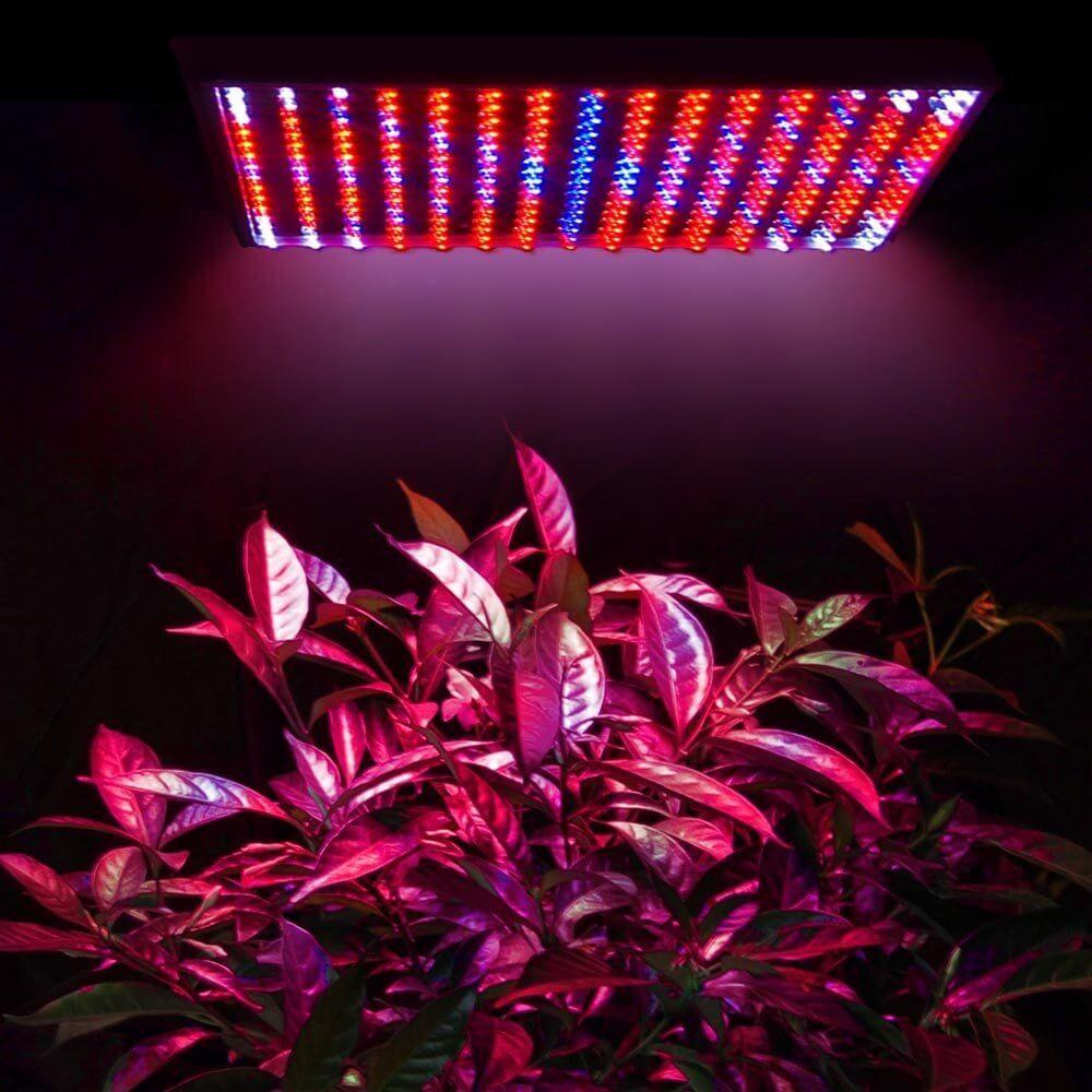 Bảng đèn led quang hợp